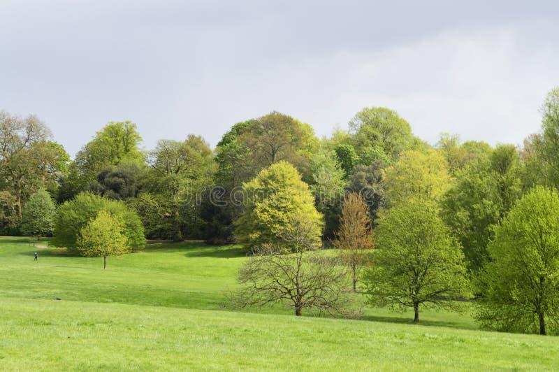 Brezo de Hampstead cerca de la casa Hampstead Londres Reino Unido de Kenwood fotografía de archivo