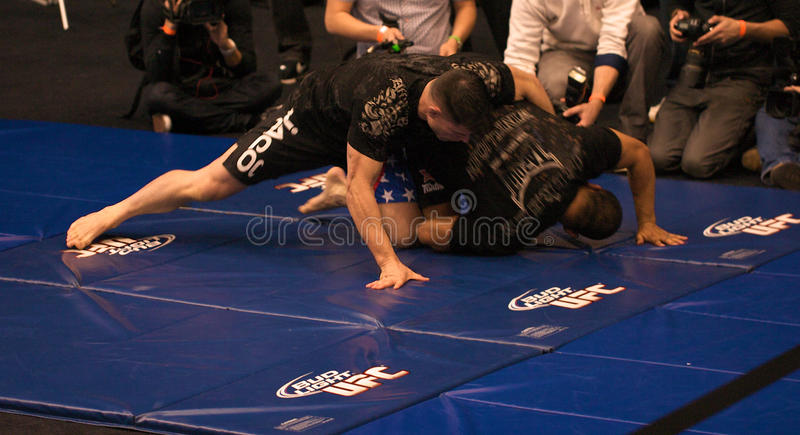 Download Brian Stann UFC 125 At MGM Open Workout 12/30/2010 Editorial Image - Image: 17616040