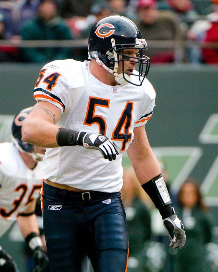 Brian Urlacher Chicago Bears stock foto's