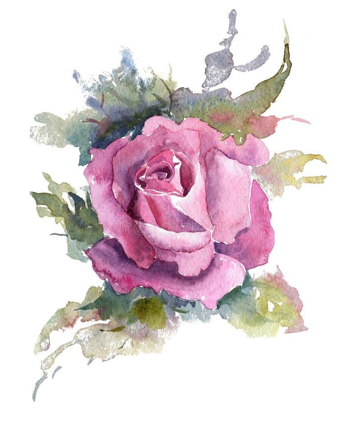 Briar Rose flowers handmade watercolor pattern gentle royalty free illustration