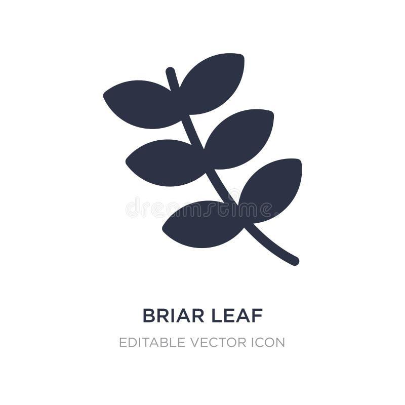 Briarblattikone auf weißem Hintergrund Einfache Elementillustration vom Naturkonzept lizenzfreie abbildung