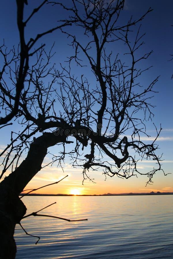 bribie ηλιοβασίλεμα στοκ φωτογραφίες με δικαίωμα ελεύθερης χρήσης