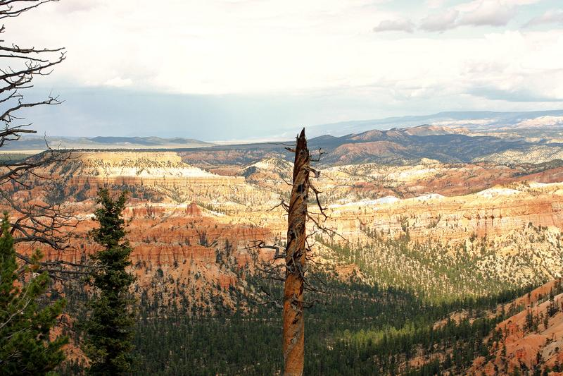 Brice Canyon-Punkt lizenzfreie stockbilder