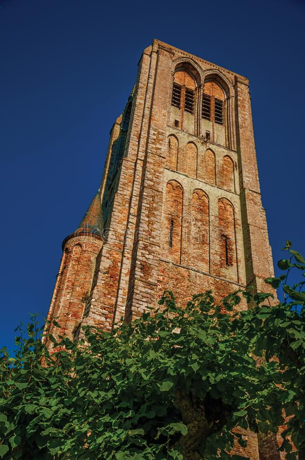 Brick bell tower in garden of medieval church ruins, in the late afternoon light at Damme. royalty free stock photos