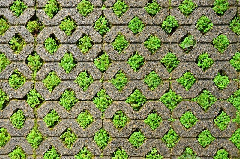 Brick Block With Grass Stock Image Image 32645221