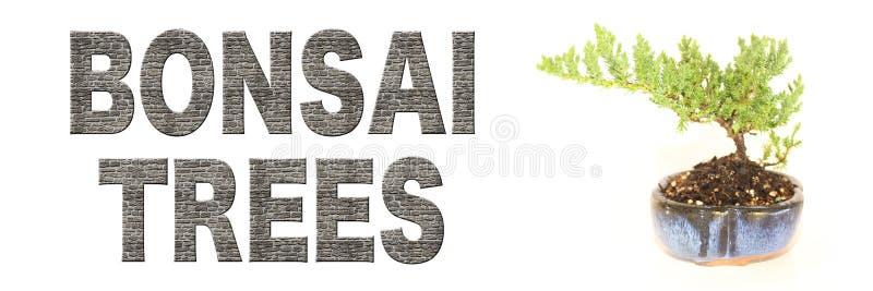 Brick Bonsai Trees Words on a White Background royalty free stock photos