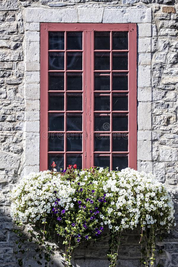 Brick building with red trim around window with purple and white flowers in front royalty free stock image
