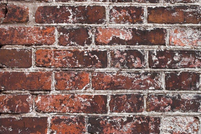 brick materiałów obraz stock