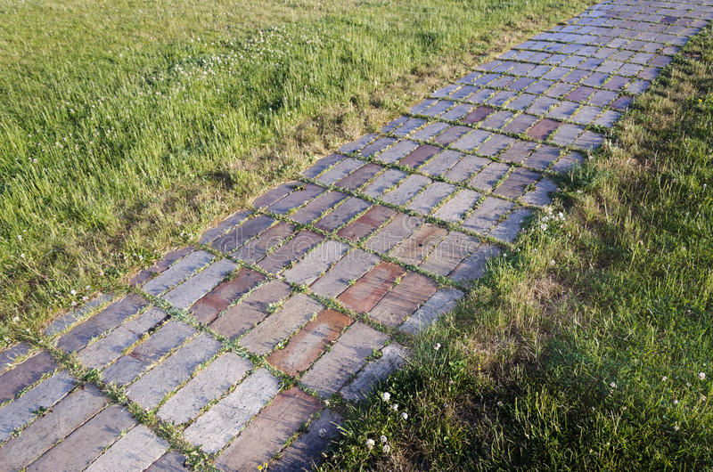 Download Brick Road stock photo. Image of grass, moist, tile, trail - 24996194
