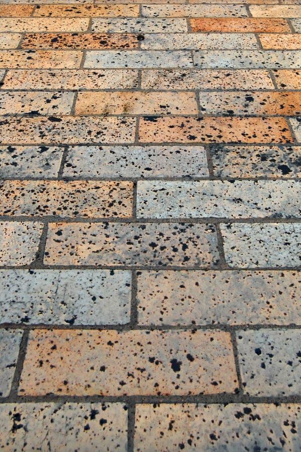 Download Brick Sidewalk stock photo. Image of grey, footpath, interlocked - 19503462