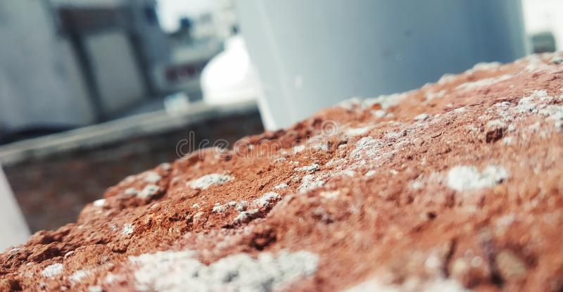 Brick in a the sun royalty free stock photo