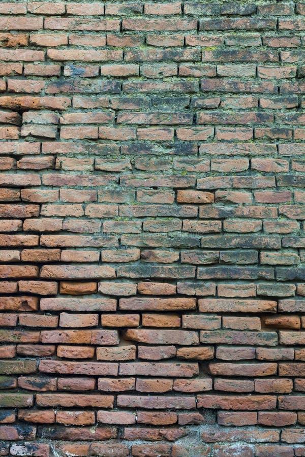 Brick Texture Textura Ladrillos Stock Photo Image of brick wall