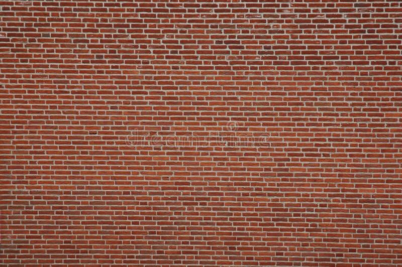 Brick_Wall immagine stock libera da diritti