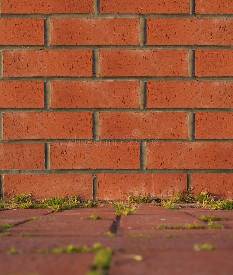 Download Brick wall stock photo. Image of built, backgrounds, brick - 18595076