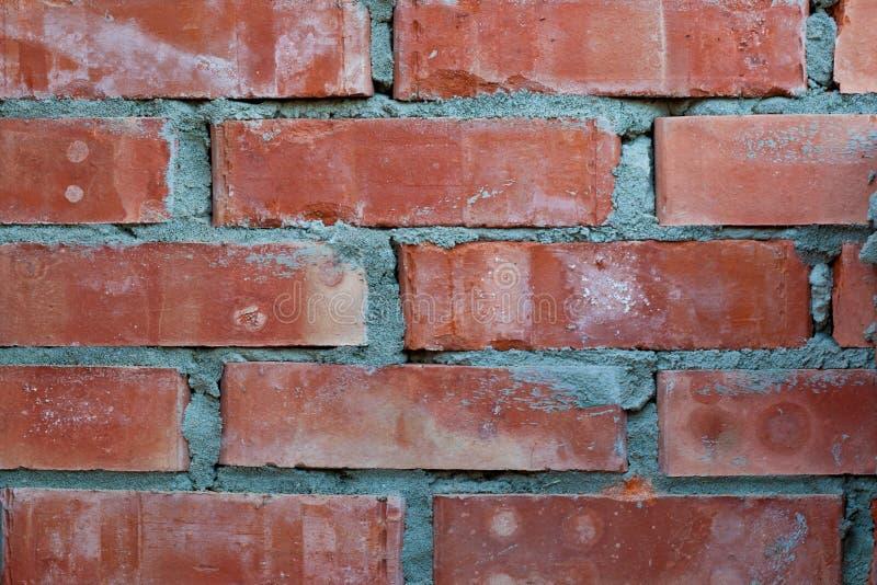 Download Brick wall stock image. Image of orange, backgrounds - 21629809