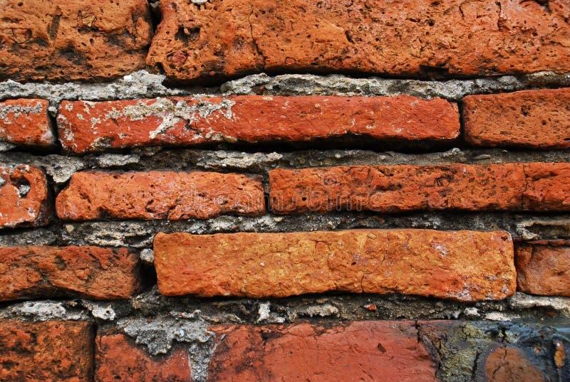 Download Brick Wall Royalty Free Stock Photo - Image: 5779005
