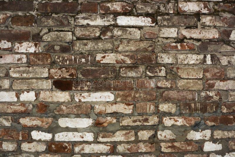 Download Brick wall stock photo. Image of grainy, facade, creaky - 7508670
