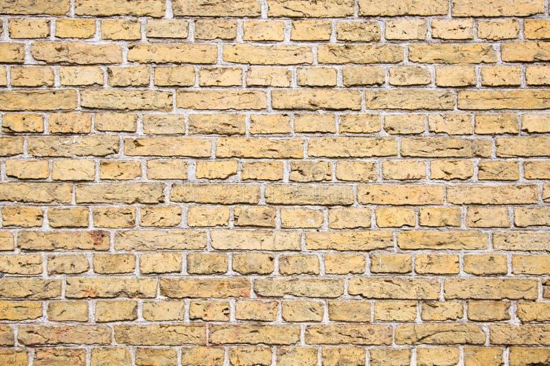 Brick wall royalty free stock photo