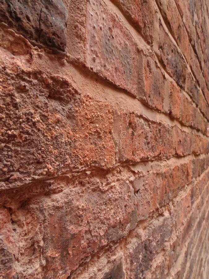 Brick wall. Couple in park stock photography