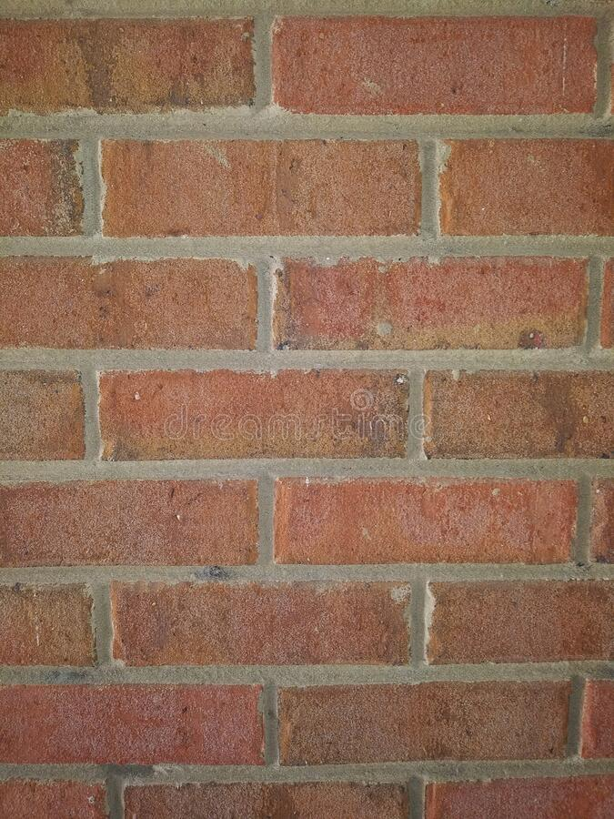 Brick wall front view solid royalty free stock photography