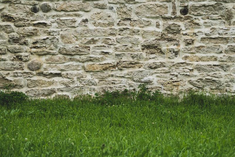 Brick wall and grass. stone wall background. old masonry royalty free stock images