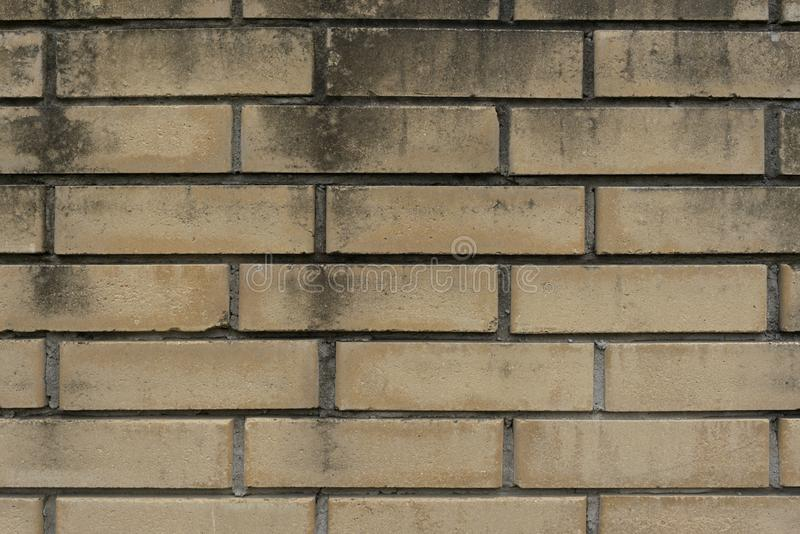 Brick wall masonry texture background building wall texture stock photo