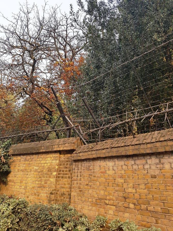 Brick wall in the park. London, England royalty free stock photos