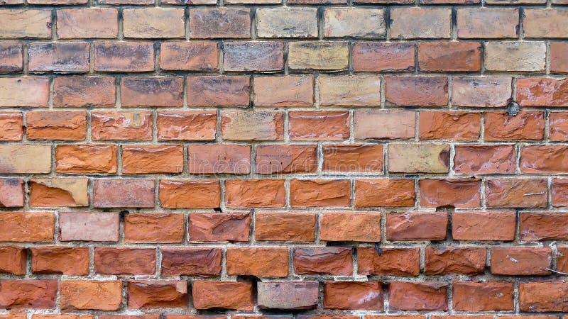 Brick Wall Vienna, Austria royalty free stock image