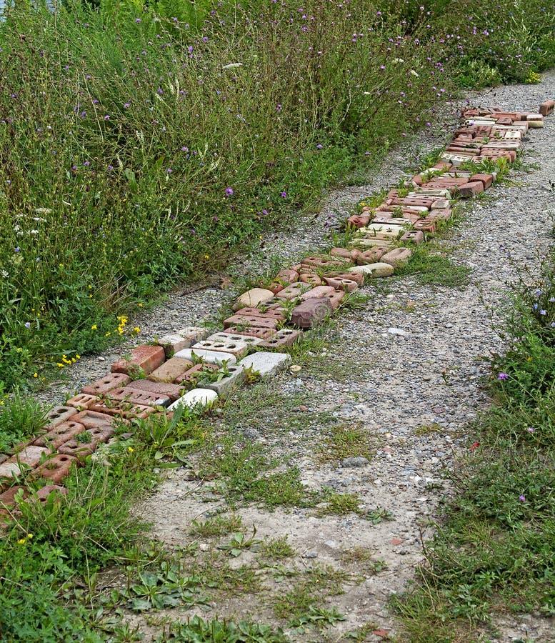 brick z zdjęcia royalty free