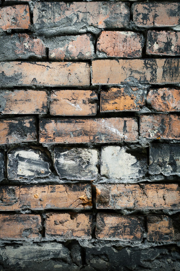 Bricklaying в большинстве стоковые фото