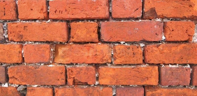 bricklaying royaltyfri bild