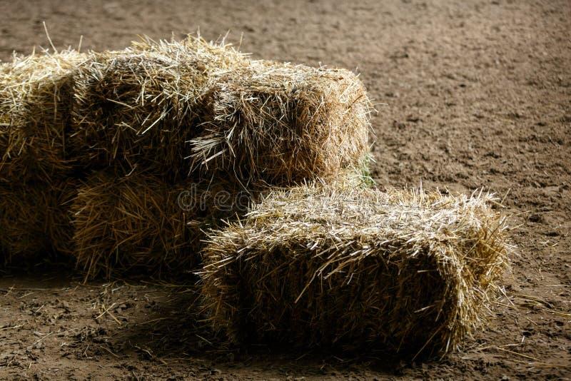 Bricks of fresh hay royalty free stock photography