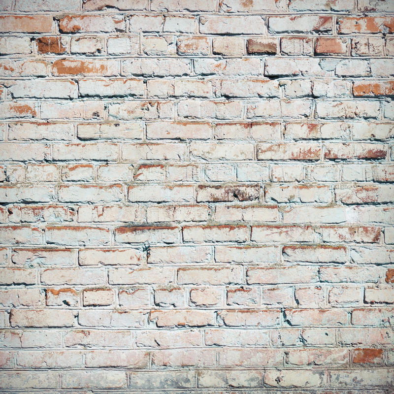 Download Bricks painted white. stock photo. Image of background - 71388886