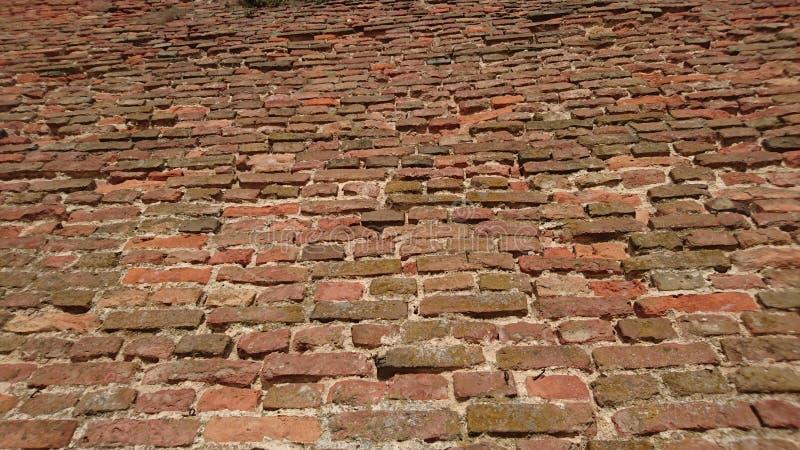 Bricks Texture royalty free stock photo