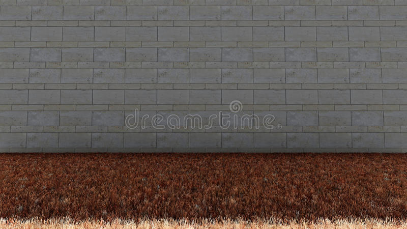 Bricks Wall in Back and Dry Grass Floor royalty free stock photography