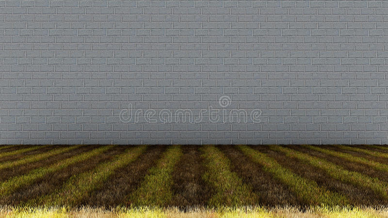 Bricks Wall in Background and Grassy Floor royalty free stock photography