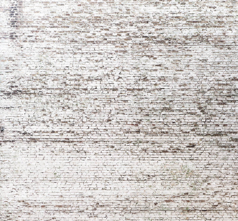 Brickwall που χρωματίζεται με το άσπρο χρώμα στοκ εικόνα με δικαίωμα ελεύθερης χρήσης