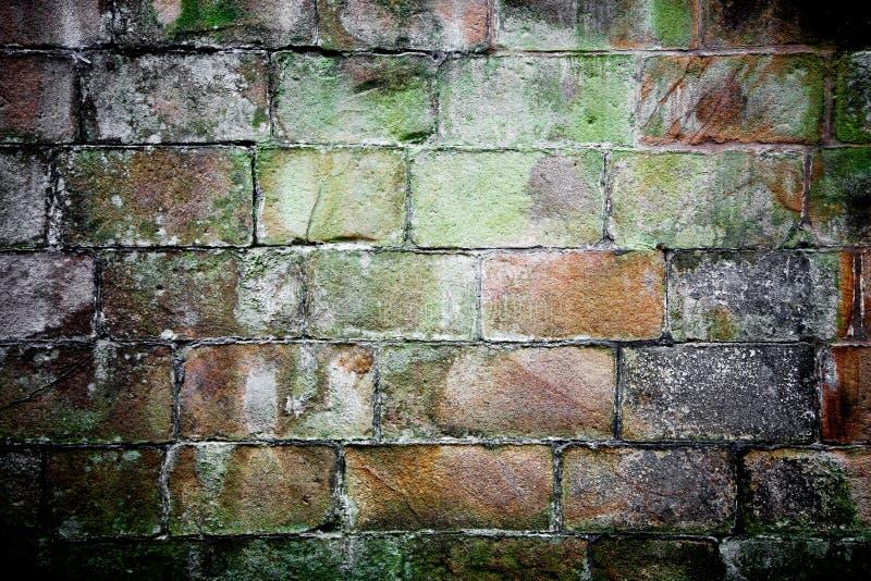 Brickwall fotografia de stock royalty free