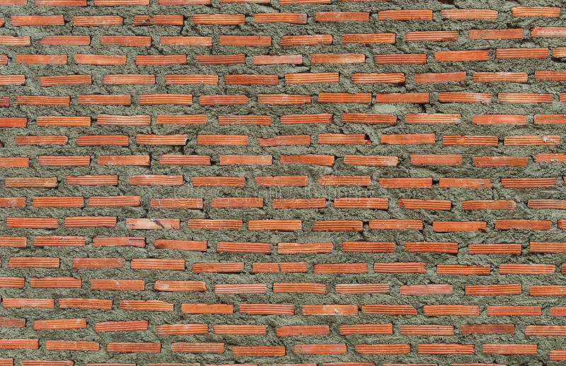 Brickwall στοκ εικόνες