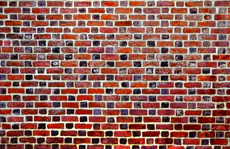 Brickwall imagen de archivo libre de regalías