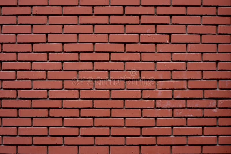 Brickwall royalty free stock photo