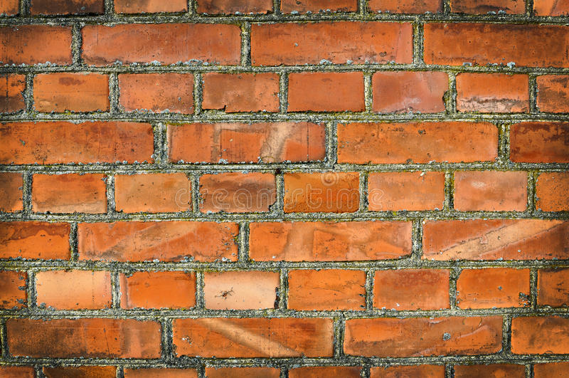 Brickwall velho foto de stock royalty free