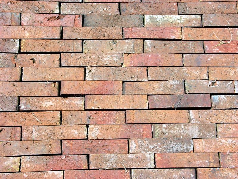 bricky trottoar fotografering för bildbyråer