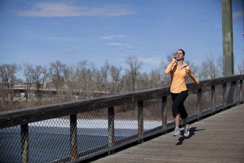 bridżowa kobieta fotografia royalty free