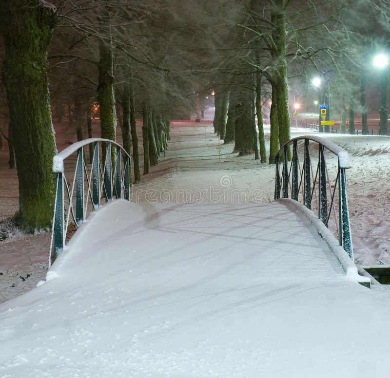 bridżowa zima fotografia royalty free