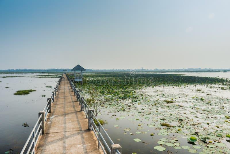 Bridżowego widoku Sakon Nakhon jeziorna nonghan prowincja, Tajlandia zdjęcia royalty free