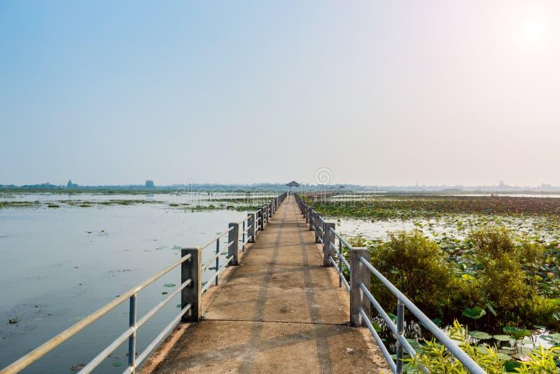 Bridżowego widoku Sakon Nakhon jeziorna nonghan prowincja, Tajlandia obraz royalty free