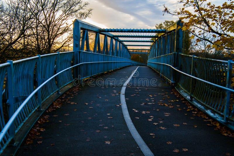 Bridżowy brać na błękitnym odcieniu w jutrzenkowym świetle fotografia royalty free