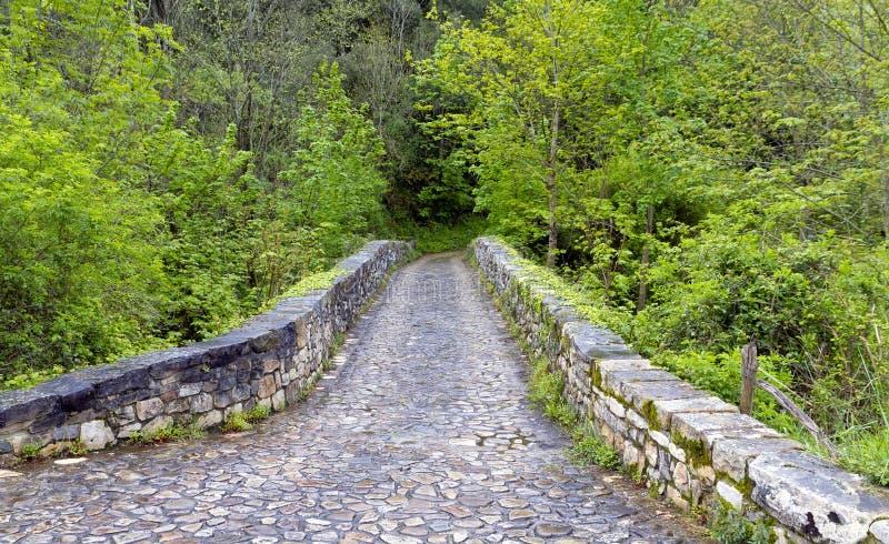 bridżowy Cabrales de wkładu poo rzymski obraz stock