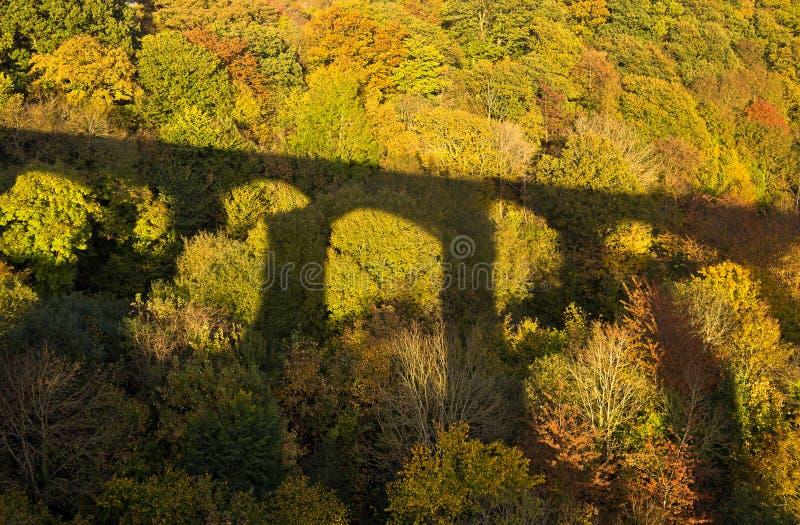 Bridżowy cień na jesień lasu Colours fotografia stock